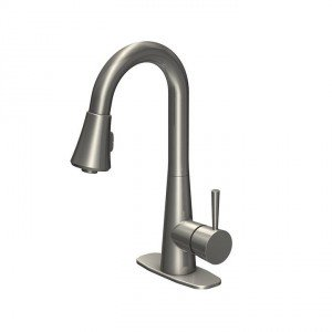 Carson_Laundry_Faucet__Brushed_Nickel_720x720_72_RGB