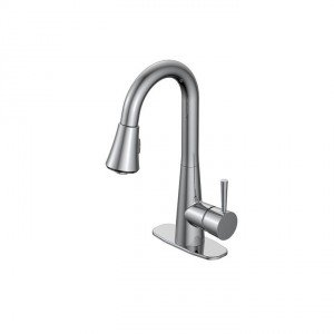 Carson Laundry Faucet in Chrome
